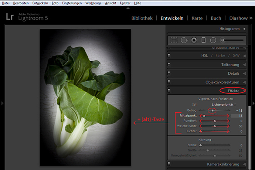 Lightroom – Entwickeln Modul – Effekte