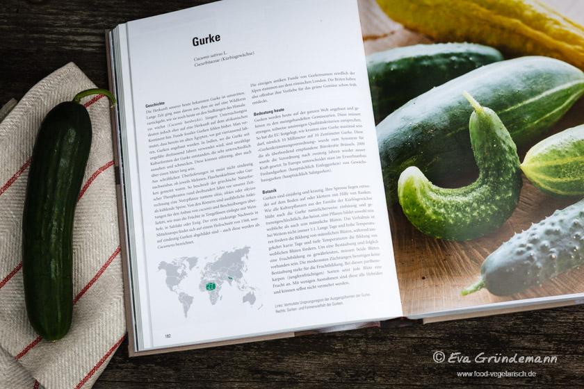 Alte Gemüsesorten im Überblick - Lexikon der alten Gemüsesorten | Buchrezension auf food-vegetarisch.de