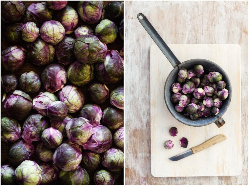 Roter Rosenkohl | FOOD VEGETARISCH
