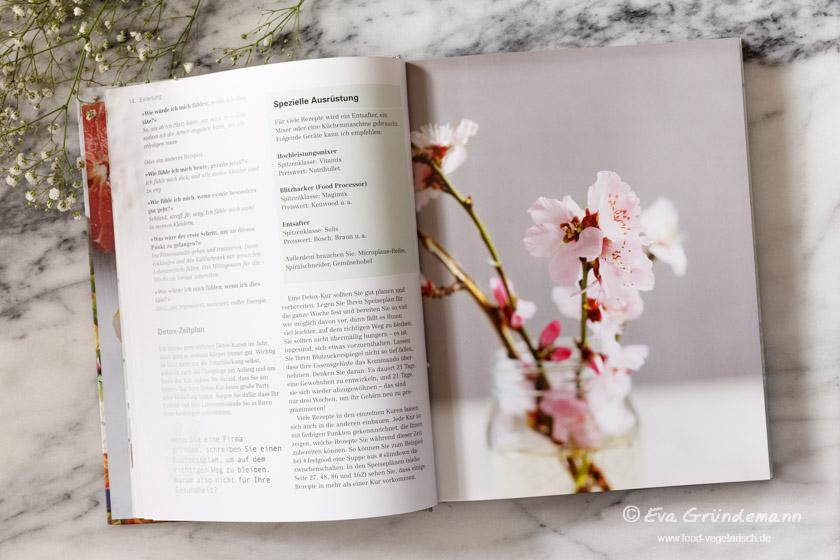 Kochbuch Detox basisch vegetarisch