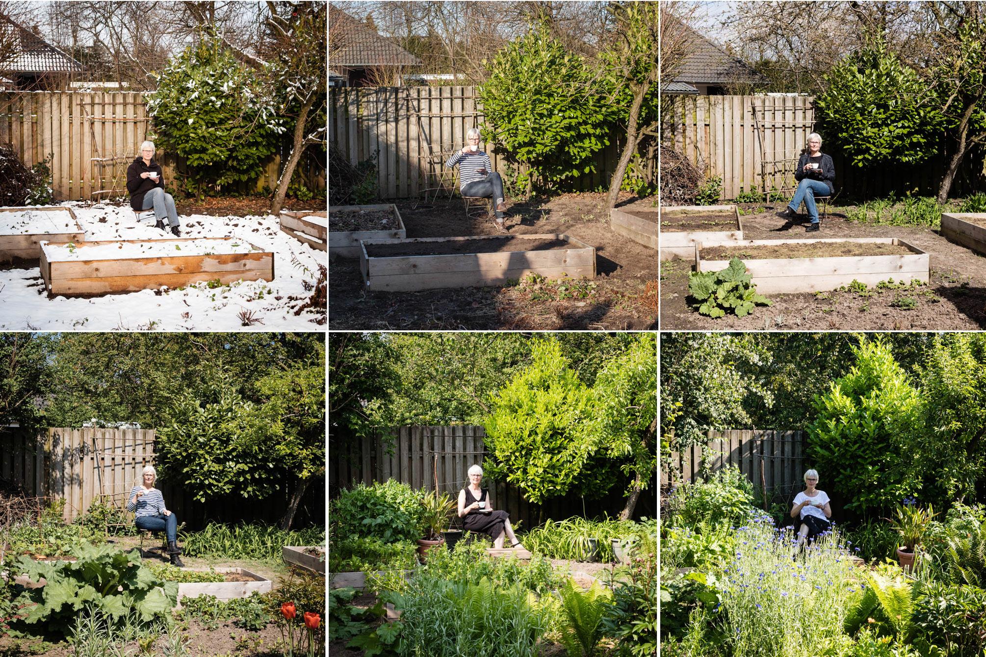 Mein Gartenjahr 2019 - Teil 1